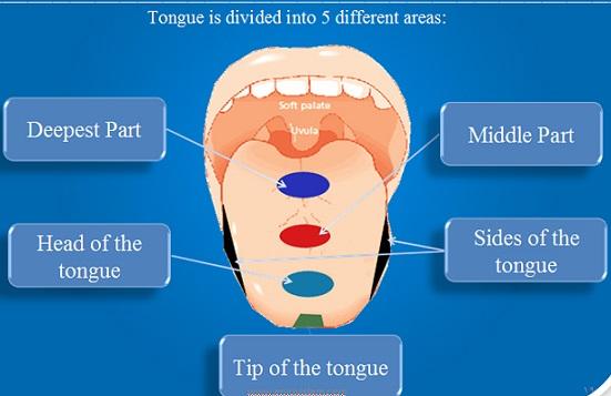 online quran teaching,learn the rules of tajwid.